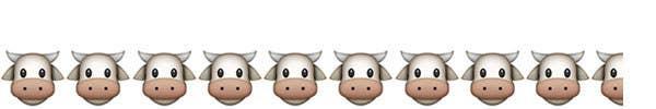 9.5/10 Creeper Cows