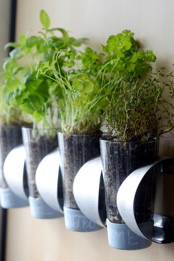 Make a ridiculously cheap herb garden (indoor or outdoor) using an Ikea doo-dad.
