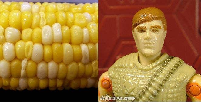 This summer corn looks like a GI JOE.