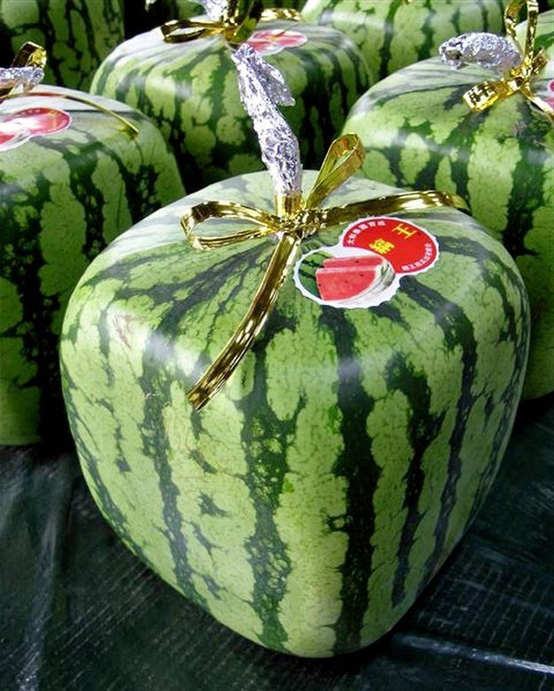 Shipments of square-shaped watermelons started on Wednesday from the western Japanese town of Zentsuji to markets across the country and overseas.