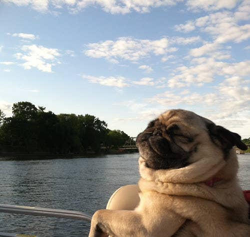 Hit up the lake!
