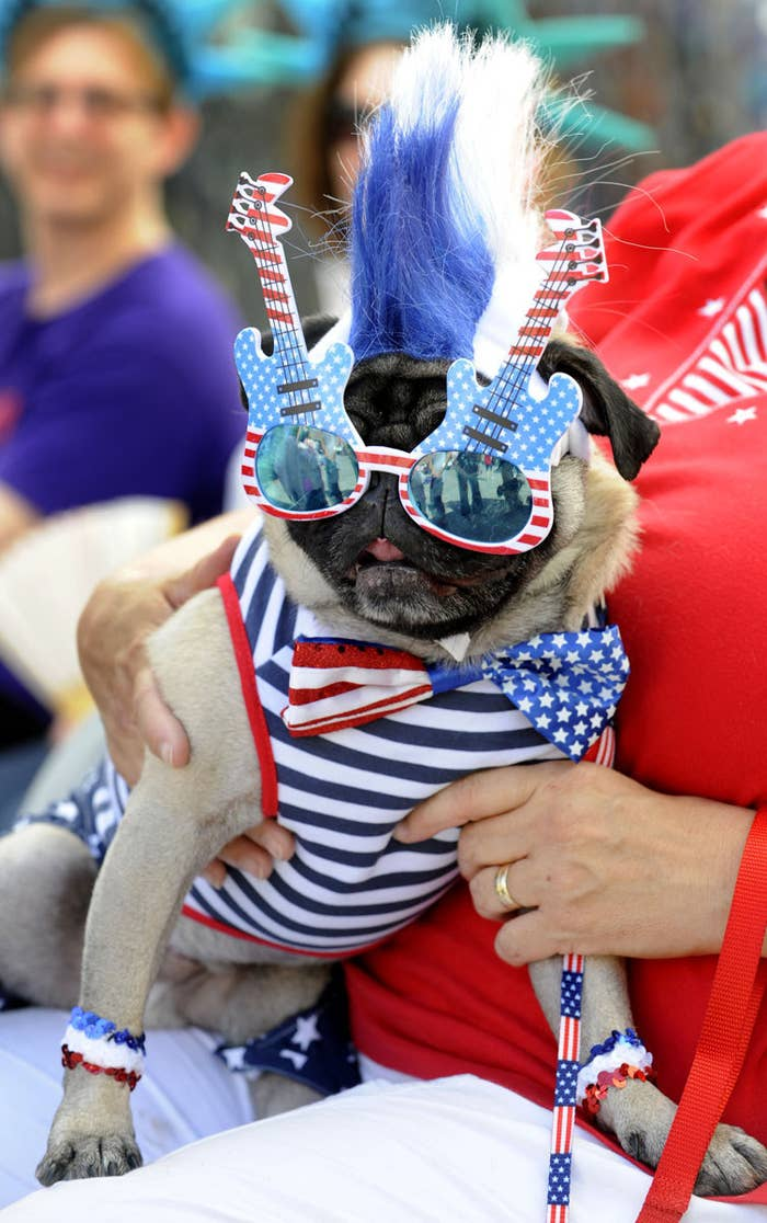 Wear as much red, white, and blue as you can! Be festive!