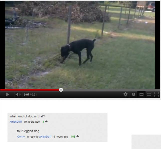 The 35 Best YouTube Comments Of All Time