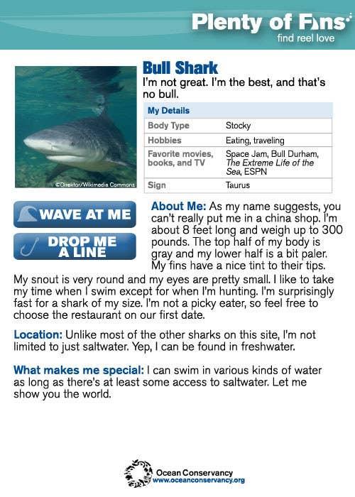 Swim fish dating, slut iwfe training