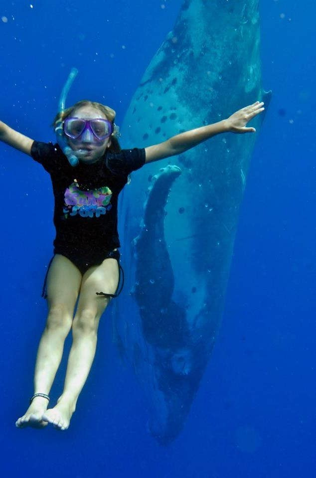 Majestic Underwater Sites You Need To Visit Before You Die - 6 amazing underwater attractions