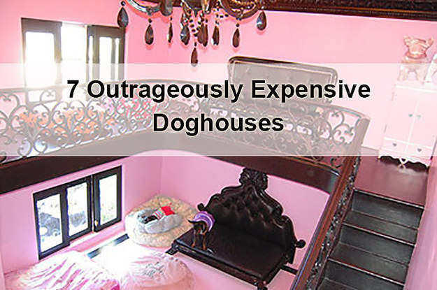 Expensive Dog Houses 7-outrageously-expensive-doghouses-2-11628-1412097206-8_dblbig