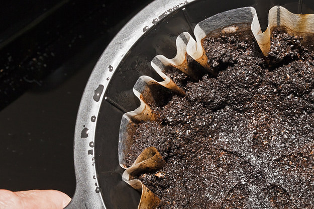 32 utilisations inattendues du marc de caf qui am lioreront votre quotidien - Marc de cafe orchidee ...