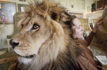 These Photos Of A Teenage Melanie Griffith And Her Pet Lion