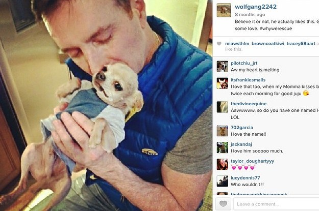 The Instagram Account Every Animal Lover Needs To Follow