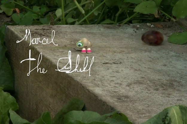 Marcel The Shell Guess Why I Smile A Lot