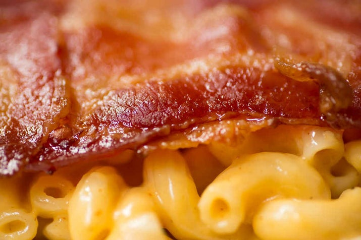 """Your eyes don't deceive you. That's gooey macaroni and cheese oozing out from between two bacon """"tortillas""""."""