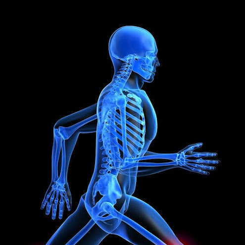 Jarski RW et al (Altern Ther Health Med, 2000) demonstrated that OMT improved walking after knee or hip surgery.Knebl JA et al (JAOA, 2002) used OMT in a randomized controlled trial to improve shoulder function in the elderly.Eisenhart AW et al (JAOA, 2003) showed OMT improves ankle injuries in the ER.Howell JN et al (JAOA, 2006) showed OMT improves Achilles tendinitis. Wynne MM et al (JAOA, 2006) showed OMT improves plantar fasciitis.Alburquerque-Sendín F et al (Man Ther, 2009) showed that OMT improves standing stability.Hidalgo-Lozano A et al (J Bodyw Mov Ther, 2011) treated shoulder pain with trigger point OMT.Moore SD et al (J Orthop Sports Phys Ther, 2011) demonstrated that among collegiate baseball players, OMT lessened shoulder tightness. Brumm LF et al (JAOA, 2013) did a cohort study and showed less stress fractures occurred in cross-country athletes who received OMT. Barnes PL et al (J Bodyw Mov Ther, 2013) used objective measures to detect changes in neck muscle function after OMT.
