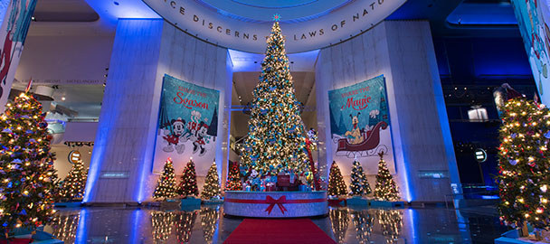 Top 20 things to do in chicago during the holiday season for Top 10 christmas traditions in america