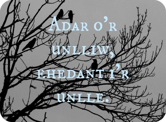"Welsh: ""Adar o'r unlliw, ehedant i'r unlle."" Approximate pronunciation: adar or un-hloo, eh-haydant eer un-hlayTranslation: ""Birds of the same color fly to the same place."""