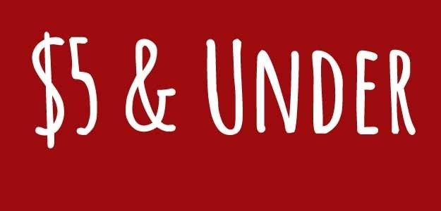 Unisex christmas gift ideas $20