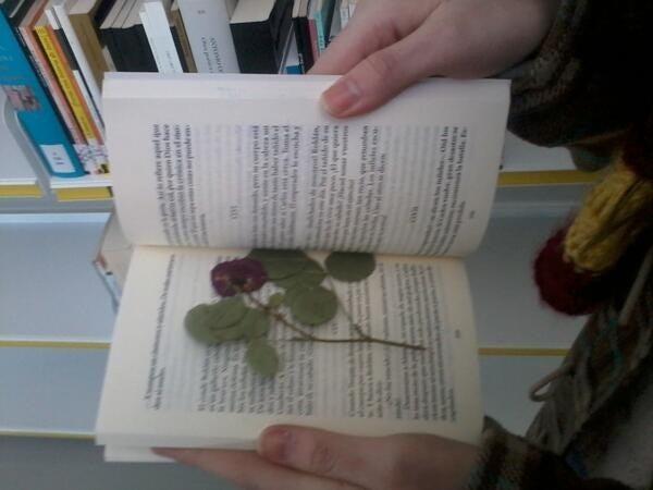 (Y el hecho que todavía haya gente que lea libros impresos, y vaya a la biblioteca)