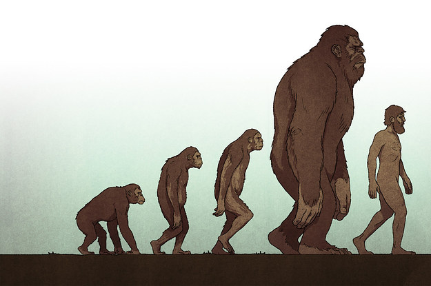 The Hunter, The Hoaxer, And The Battle Over Bigfoot