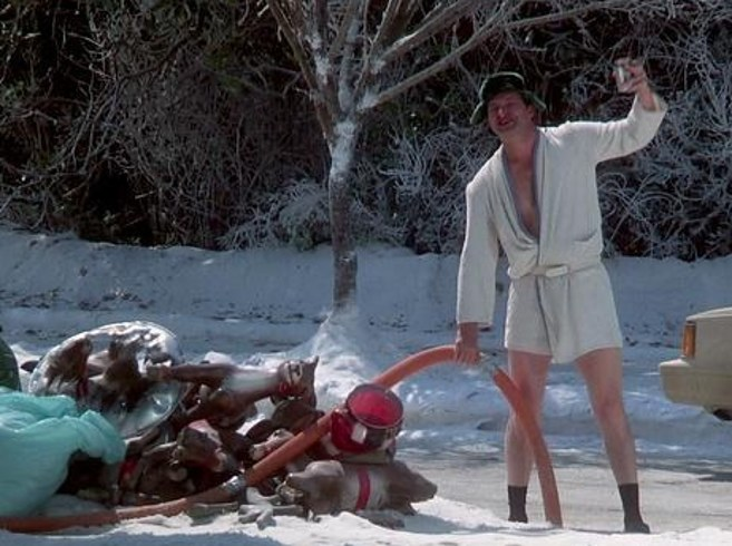 The Cast Of Quot National Lampoon S Christmas Vacation Quot Then