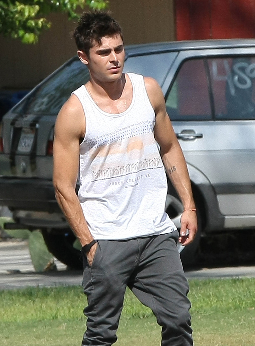 The 33 Most Important Things Zac Efron 39 S Arms Did In 2014