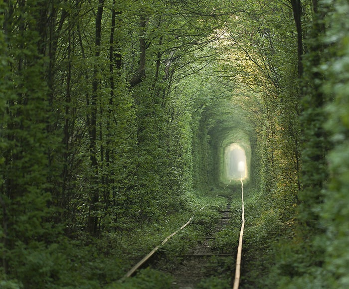 """You would be forgiven if you believed this to be the path to Narnia. Located in Klevan, Ukraine, this """"Tunnel of Love"""" is actually a private railroad for a nearby fiberboard factory."""