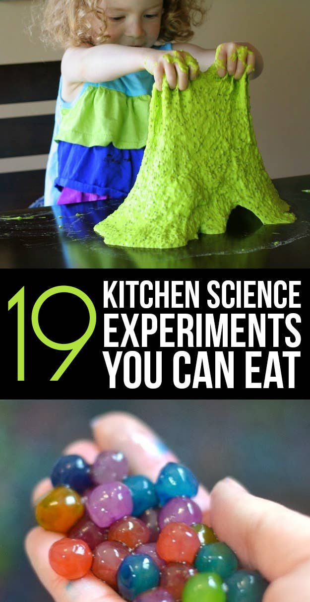 Simple Kitchen Experiments fine simple kitchen experiments lettuce grow your own food on the