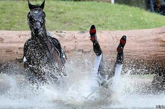 21 Things Only True Equestrians Will Understand