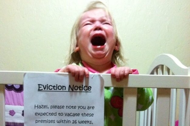 This Is The Best Pregnancy Announcement Youve Ever Seen – Best Baby Announcement