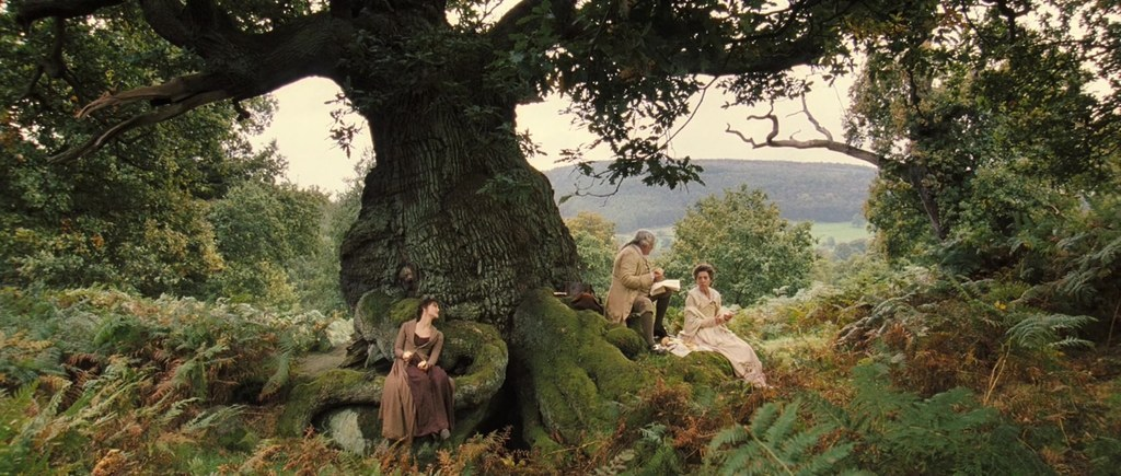 """Bosque de Sherwood """"Orgullo y Prejuicio"""""""