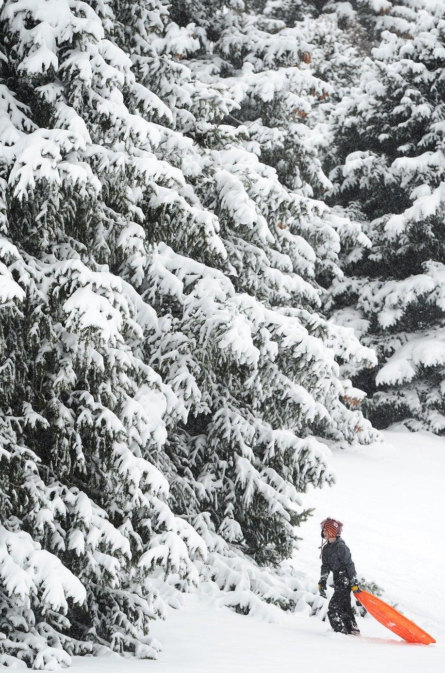 Lakewood, Colorado on February 16, 2015.