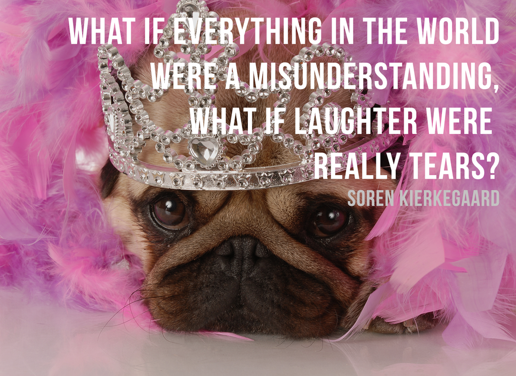 12 Adorably Sad Pugs Going Through An Existential Crisis