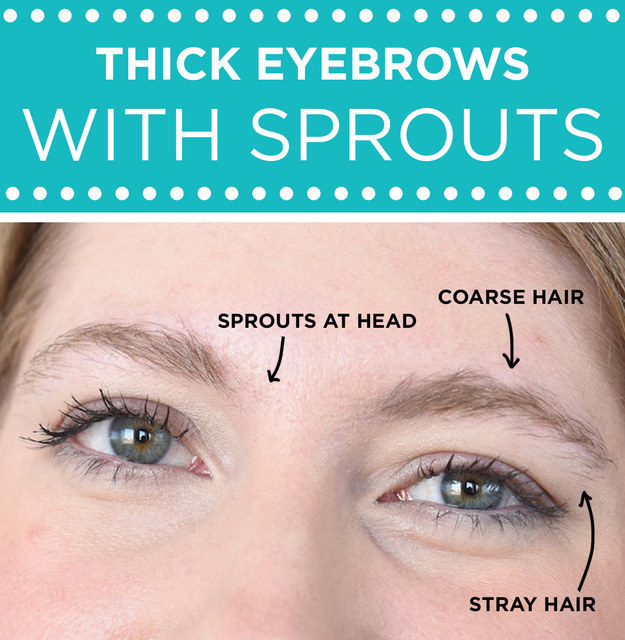 Can You Trim Eyebrow Hair World Novelties Makeup 2017