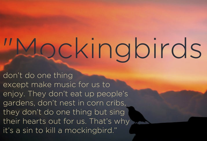 to kill a mockingbird essay on jem To kill a mockingbird essays in this world, it is not unusual for people to conform to what is right in society some of those people who don.