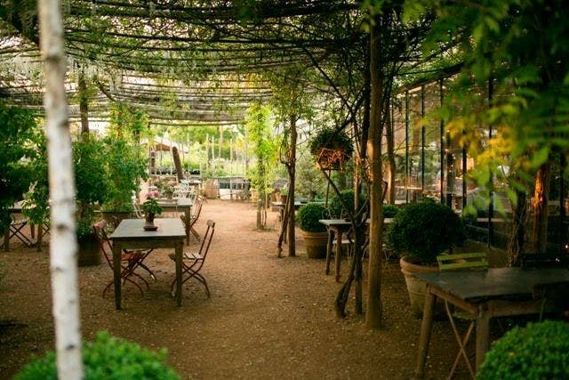 The gardens and cafe at Petersham Nurseries are one of many delightful hidden London refuges.