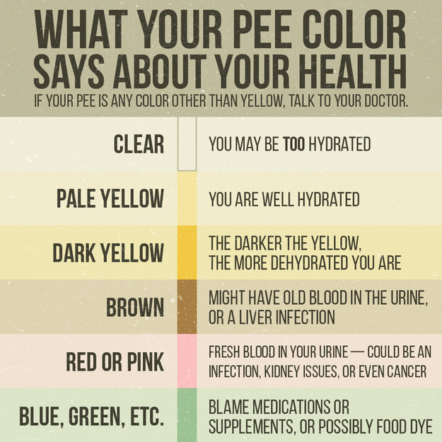 31 Things You Should Definitely Know About Pee Buzzfeed News