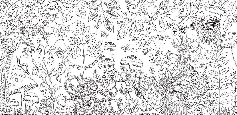 Meet The Woman Who Sold A Million Copies Of Her Coloring Books For ...