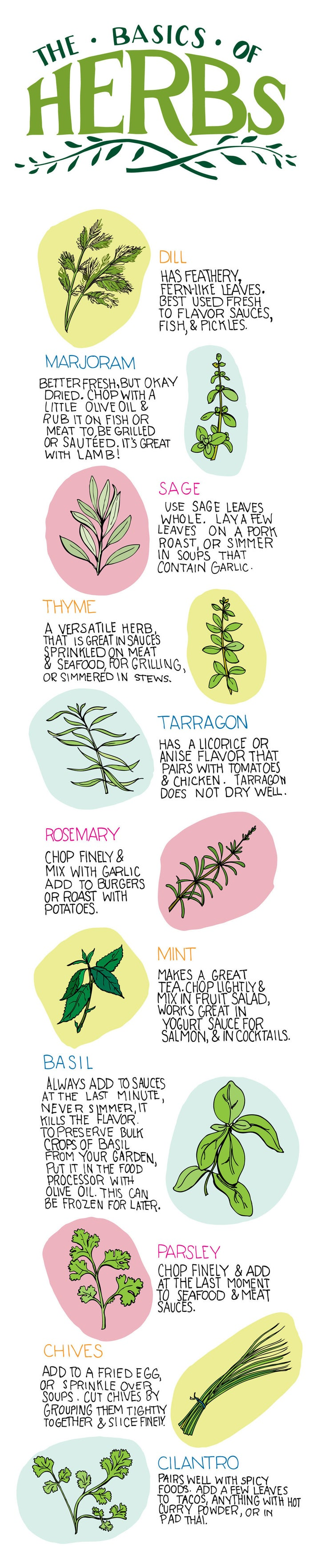 Read through this herb primer and then decide what you want to grow.