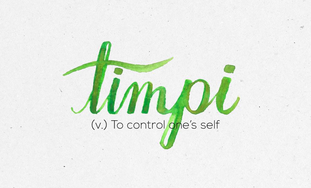 """""""Timpi"""""""
