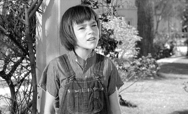 to kill a mockingbird expectations of scout To kill a mockingbird innocence of scout innocence, or the loss of innocence, is a theme that permeates many great works of literatureto kill a mockingbird by harper lee is no exception.