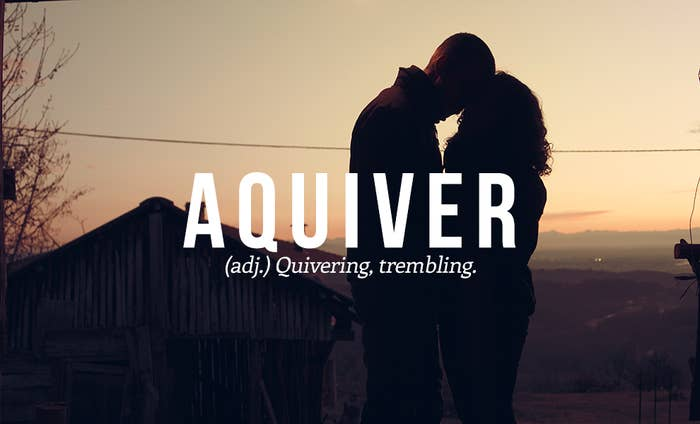 Aquiver: Quivering, trembling.Suggested by @MarkGrainger.