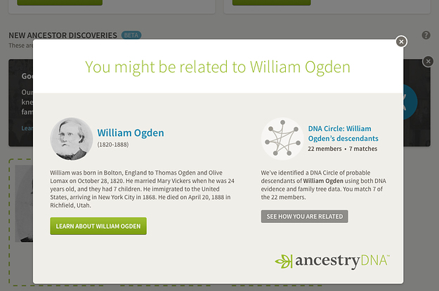 Your DNA Can Now Help Build Your Family Tree Instantly
