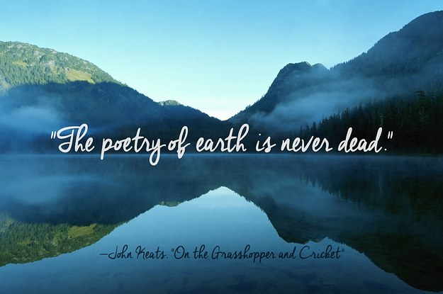 Landscape Quotes Stunning 24 Of The Most Beautiful Quotes About Nature