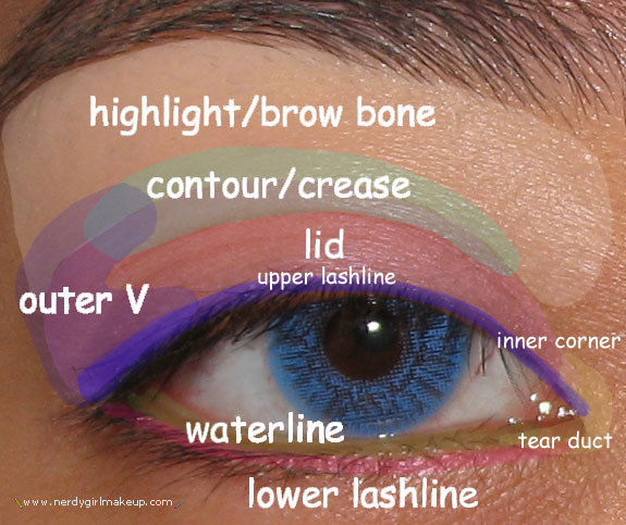 19 eyeshadow basics everyone should know rh buzzfeed com natural eye makeup diagram eye makeup tutorial diagram