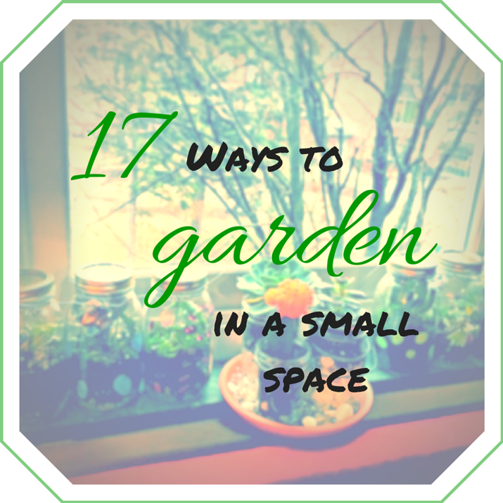 Garden Ideas In Small Spaces 17 genius small-space garden ideas