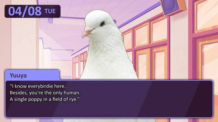 The premise is that you're a human, but you attend an elite high school for pigeons (who have become human sized due to a nuclear accident). In the high school, you date and do other normal high school things. It's a wildly popular game in Japan. BuzzFeed's Cates Holderness has actually been playing this game for years and comes in to talk to us about how it works.