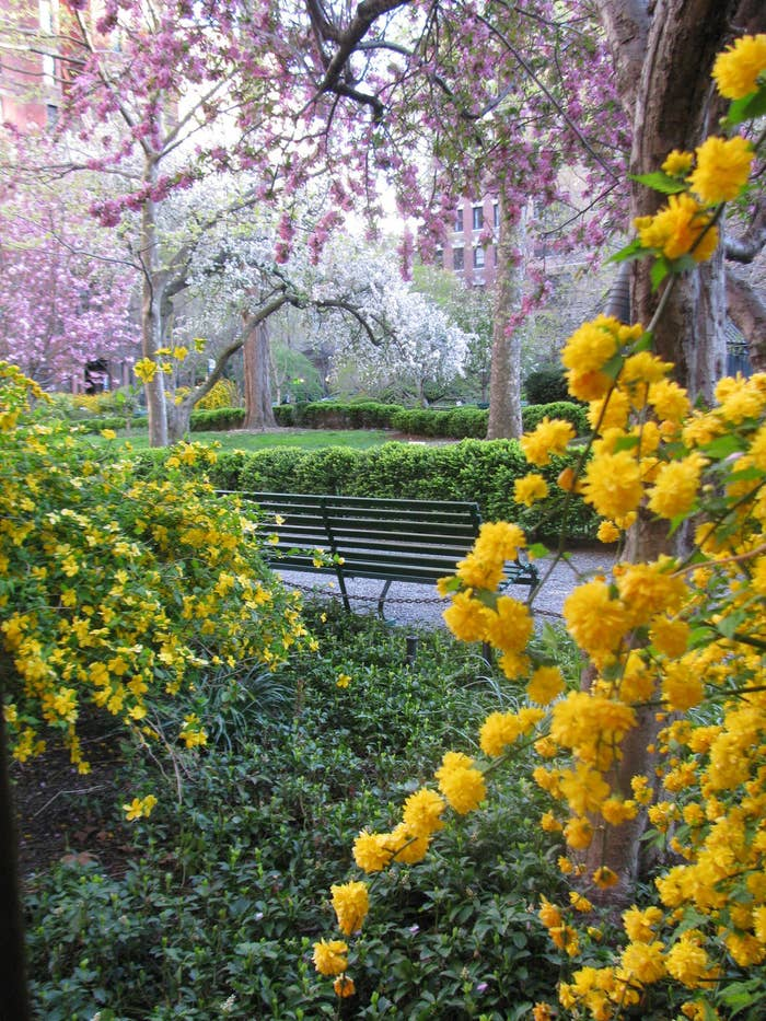 Gramercy Park is one of only two private parks in New York. Residents who live near the park have keys to access it, and there is a $1,000 fee — yes, 1,000! — for lost keys!