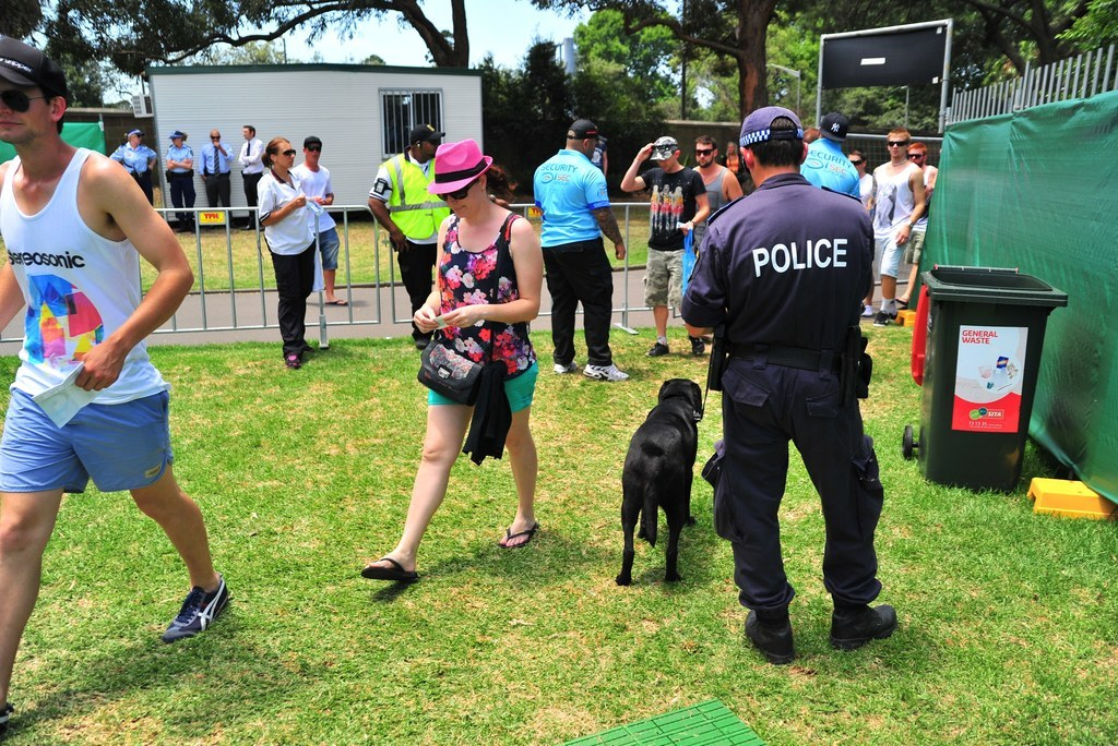 Should Police Sniffer Dogs Be Banned From Music Festivals