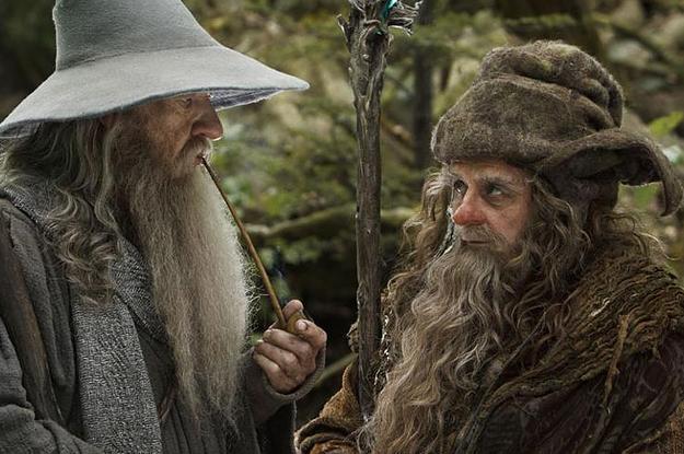 Resultado de imagen de Gandalf y Radagast