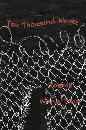 Ten Thousand Waves by Wang Ping