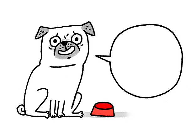 how to draw a real pug