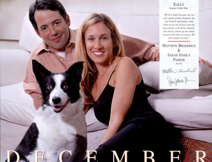 Matthew Broderick and Sarah Jessica Parker with their Border Collie Mix, Sally